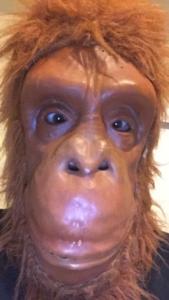 primate pete - dangerous potato - monkey business